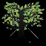 Tree green waste skip hire